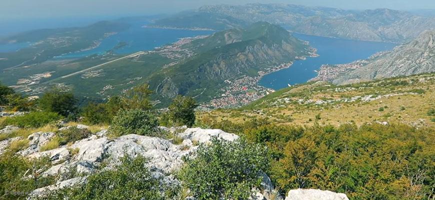 Бизнес в Черногории: какие документы нужны для поездки, плюсы и минусы ведения бизнеса, что востребовано и порядок открытия